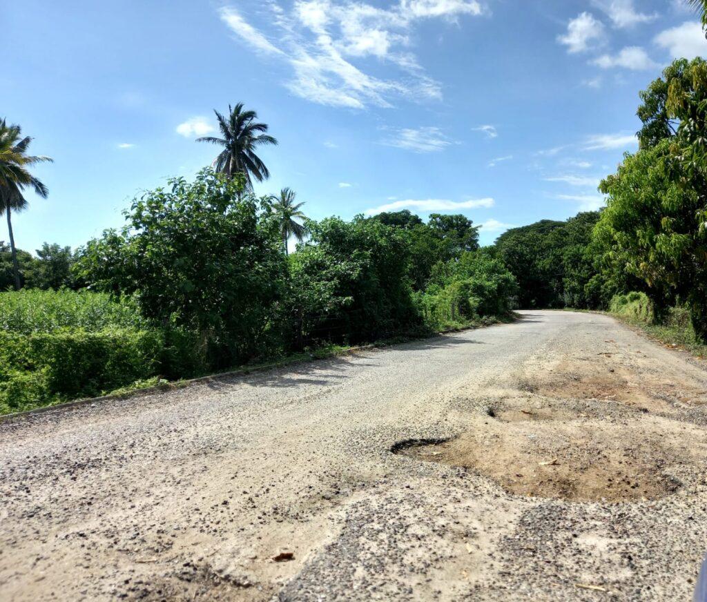 En mal estado, carretera Alcholoa-Plan de los Molinos, señalan
